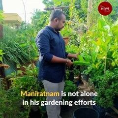 Bandar Brundavanam: A growing community of gardeners in Andhra's Machilipatnam