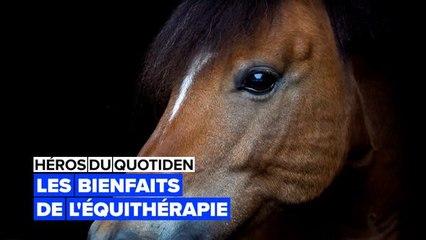 Héros du quotidien : thérapies avec poney