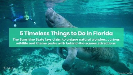 Timeless things to do in Florida