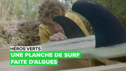 Une planche de surf aux algues