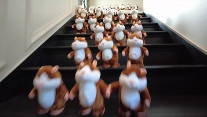Unleashing 100 Guinea Pig Toys!