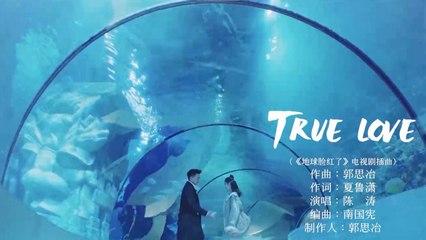 陳濤 - 【True Love】Official Music Video
