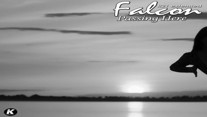FALCON - PASSING HERE - k21 extended