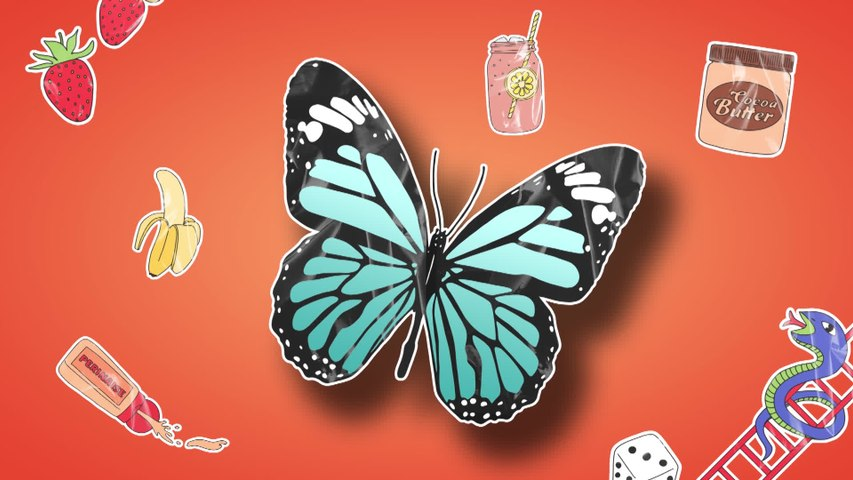 Baker Boy - Butterflies