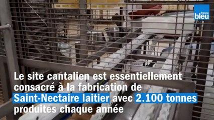 Lactalis investit à Condat dans le Cantal et modernise sa fromagerie dédiée au Saint-Nectaire