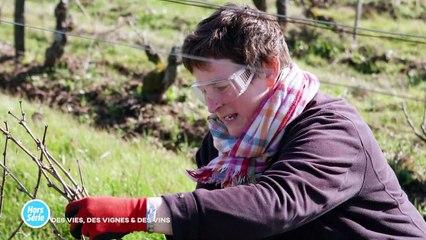 Hors-Série -  16/09/2021 - Des vies, des vignes et des vins