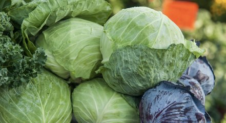 How to Buy, Store, and Cook Cabbage