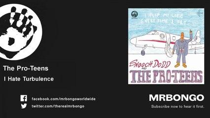 The Pro-Teens - I Hate Turbulence