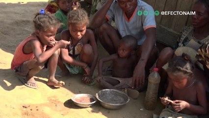 Conozca por qué el hambre registra su mayor aumento en décadas a nivel global