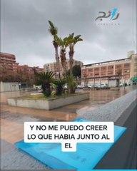 تجربة مثيرة.. شخص إسباني يستيقظ فاقد الذاكرة فيجد العالم كله اختفى!