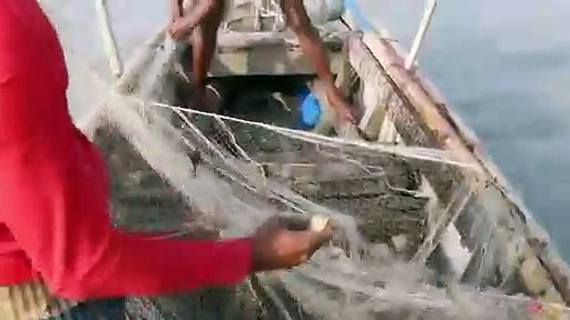 natural fish hunting By net from river natural fishing bd fishing bd