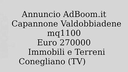Capannone Valdobbiadene  mq1100