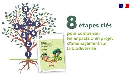 8 étapes clés pour compenser les impacts d'un projet d'aménagement sur la biodiversité