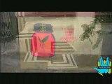 Reco(n) Belgrade Street Art