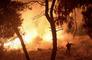 Devastadores incendios forestales en el hemisferio norte generaron récord de emisiones est