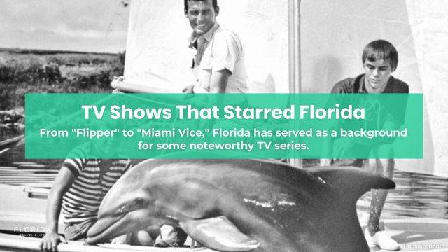 TV Shows That Starred Florida