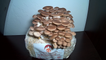 'Dazzling timelapse shows the growth of Brown Oyster Mushrooms over 3.5 days '
