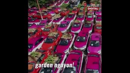 Abandoned taxis sa Thailand, tinaniman ng gulay! | GMA News Feed
