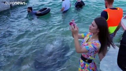 شاهد: تراجع مستوى مياه سد الموصل يكشف عن مناظر جيولوجية فريدة تجذب السياح
