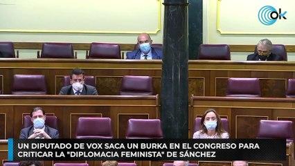 """Un diputado de Vox saca un burka en el Congreso para criticar la """"diplomacia feminista"""" de Sánchez"""