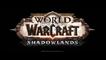 WoW Shadowlands : Intermédiaires du Mage, Conduits, Congrégations