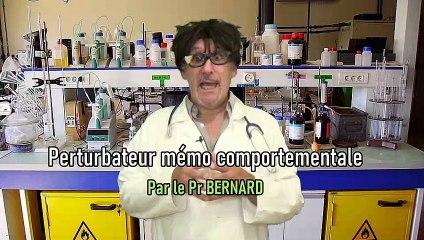 Professeur BERNARD - Les perturbations neuro comportementales