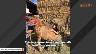 Woman becomes horse's mom after drought claims her family