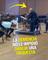 Un pianista con demencia cumple su sueño de dirigir una orquesta