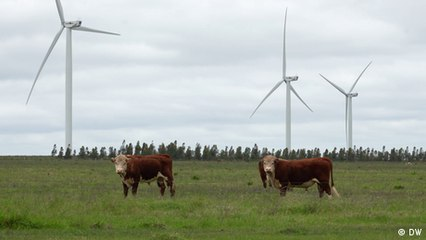 Uruguay: la transición a las energías renovables