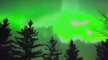 Stunning aurora borealis lights up skies over Calgary