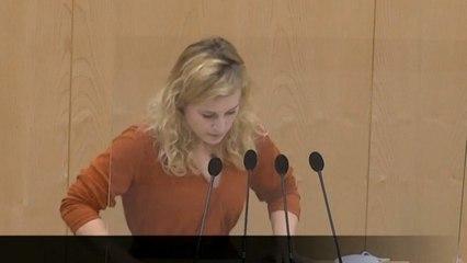 Austrian MP faints while giving speech