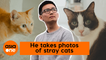 This Singapore TikToker makes stray cats look picture purr-fect