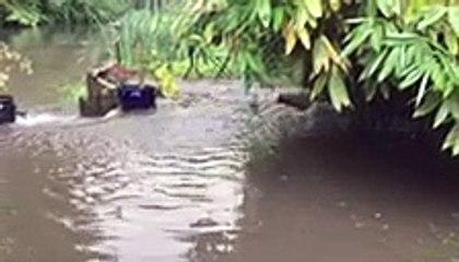 Raw sewage bursting through a drain in a Warwick couple's garden