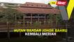 Hutan Bandar Johor Bahru kembali meriah