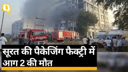 Surat Fire: सूरत की पैकेजिंग फैक्ट्री में आग, 125 लोगों को बचाया गया | Quint Hindi