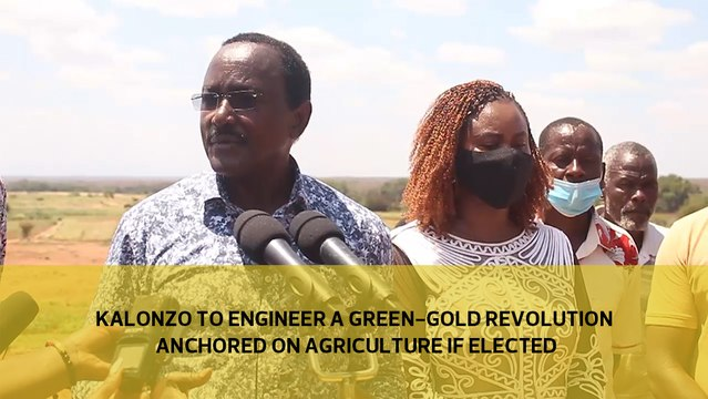 Kalonzo to engineer a green-gold revolution anchored on Agriculture if elected