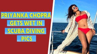 Priyanka Chopra gets wet in scuba diving pics