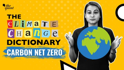 The Climate Change Dictionary   What is Carbon Net-Zero?   The Quint