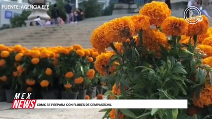CDMX SE PREPARA CON FLORES DE CEMPASÚCHIL