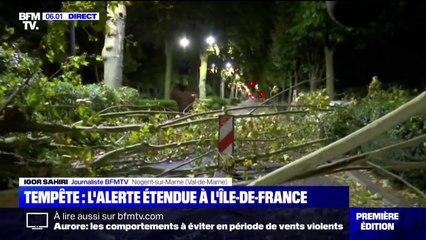 Vents violents: l'Île-de-France placée en vigilance orange, des dégâts déjà observés à Nogent-sur-Marne, dans le Val-de-Marne