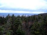 Vue du pic de l'Ours sur les hauteurs du Mont Orford