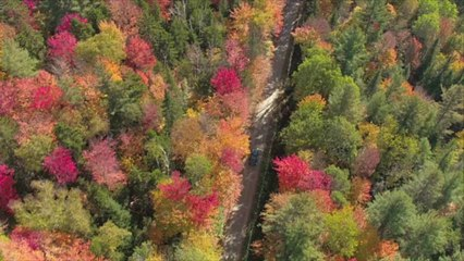 Explore Outdoors This Fall in Columbia, South Carolina