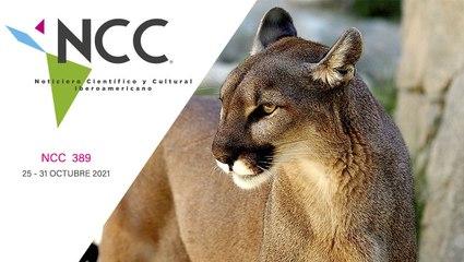 Noticiero Científico y Cultural Iberoamericano, emisión 389. 25 al 31 de octubre de 2021