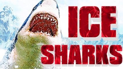 ICE SHARKS | Film Complet en Français | Requins, Nanar
