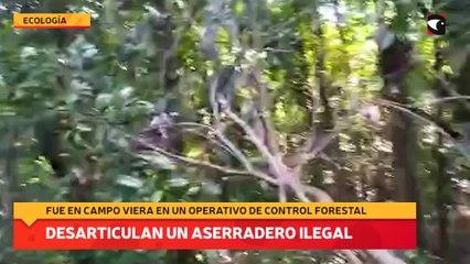 Desarticulan un aserradero ilegal