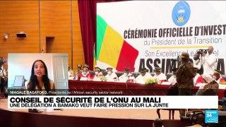 Une délégation à Bamako pour faire pression sur la junte