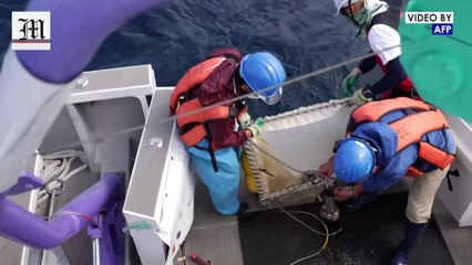 Scientists comb Japanese waters to study microplastics