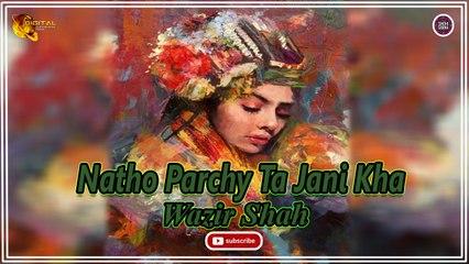 Natho Parchy Ta Jani Kha | Wazir Shah | New Sindhi Song | Sindhi Gaana
