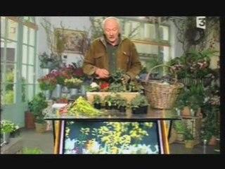 Visionnez les Cours Vidéo de Bisannuelles - Conseils de Jardinage