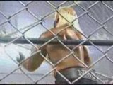 WCW - nWo Hollywood vs nWo Wolfpack vs Team DDP (part 2)